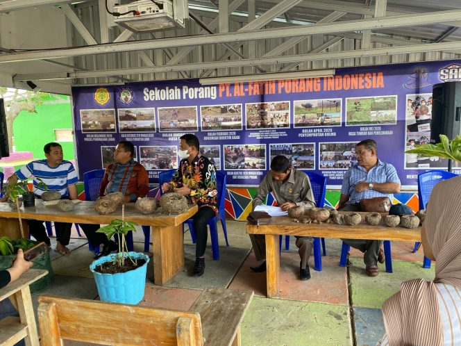 Legislator Papua Barat Belajar Budidaya Porang di Sidrap